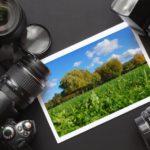 Zarabotok na prodaje foto-min